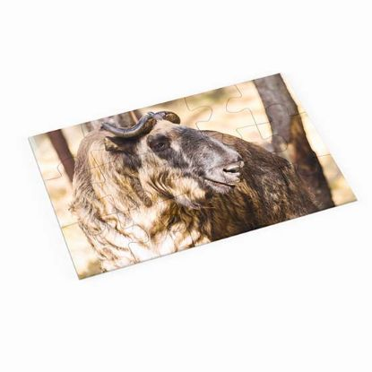 Picture of Bhutan Takin Animal Puzzle